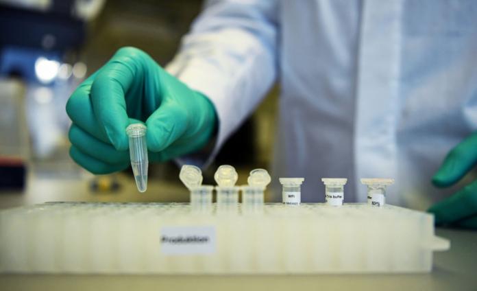 150 vaccini in corsa per sconfiggere il Covid. 17 già in fase di sperimentazione sull'uomo
